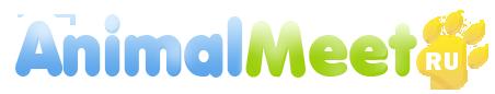 Социальная сеть домашних питомцев